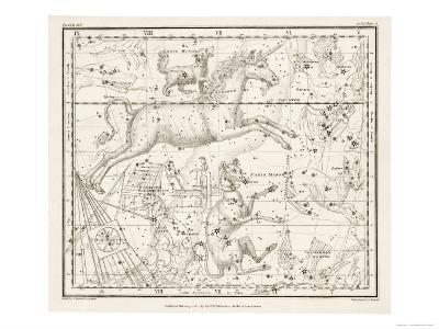 Canis Major (Dog) and Lepus (Hare) Constellation--Giclee Print