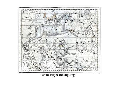 Canis Major the Big Dog-Alexander Jamieson-Art Print