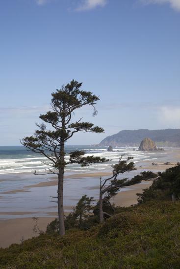 Cannon Beach and Haystack Rock, Oregon, USA-Jamie & Judy Wild-Photographic Print