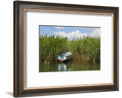 Canoe and reeds on Lake Ohrid, Republic of Macedonia-Keren Su-Framed Photographic Print