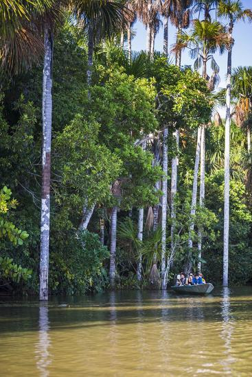 Canoe Boat Trip on Sandoval Lake, Tambopata National Reserve, Amazon Jungle of Peru, Peru-Matthew Williams-Ellis-Photographic Print