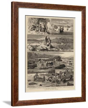 Canoeing in Nova Scotia-Joseph Nash-Framed Giclee Print