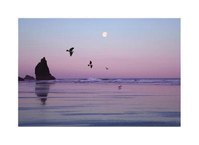 Canon Beach Sunset-Donald Paulson-Giclee Print