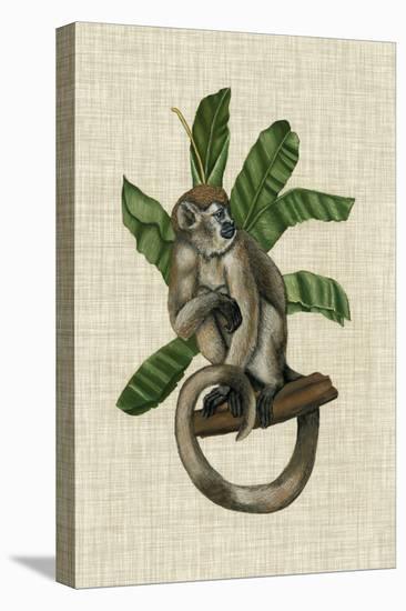 Canopy Monkey I-Naomi McCavitt-Stretched Canvas Print