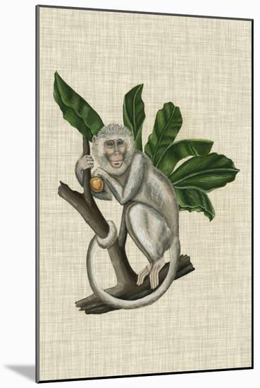 Canopy Monkey II-Naomi McCavitt-Mounted Art Print
