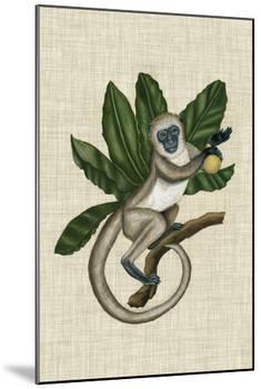 Canopy Monkey III-Naomi McCavitt-Mounted Art Print