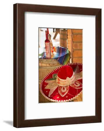 Canopy River, Tequila, Puerto Vallarta, Jalisco, Mexico-Douglas Peebles-Framed Photographic Print