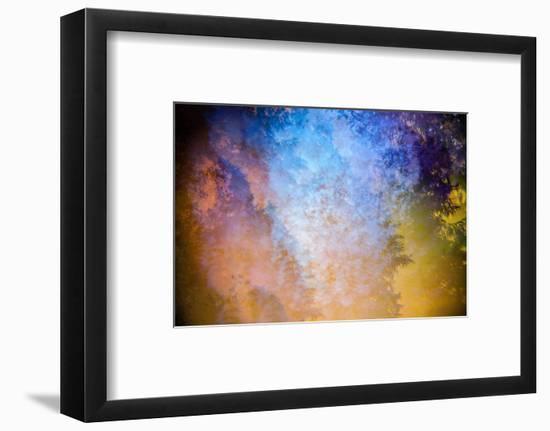 Canopy-Stuart Haury-Framed Photographic Print
