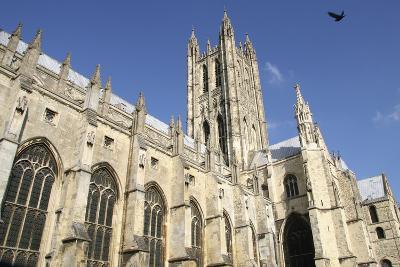 Canterbury Cathedral and Bird-Design Pics Inc-Photographic Print