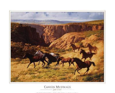 Canyon Mustangs-John Leone-Art Print