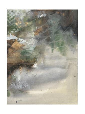 https://imgc.artprintimages.com/img/print/canyon-seasons-i_u-l-q1bhg8j0.jpg?p=0