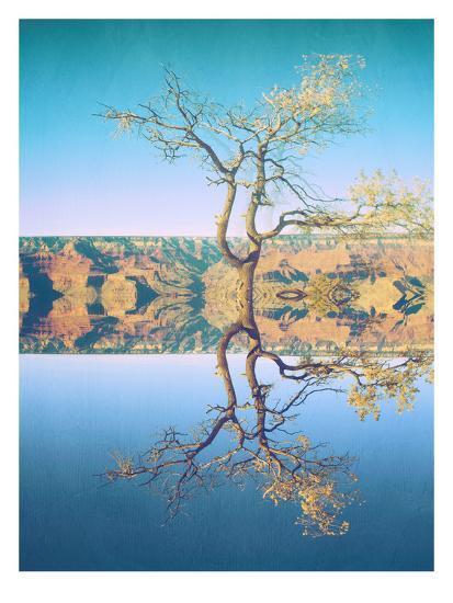 Canyon-Mina Teslaru-Art Print