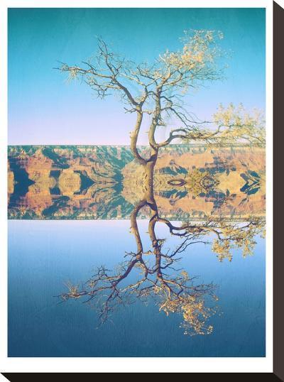 Canyon-Mina Teslaru-Stretched Canvas Print