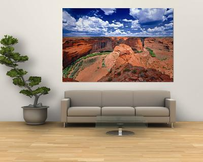 Canyon-George Oze-Wall Mural