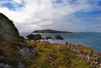Cape Clear Island from Sherkin Island, County Cork, Ireland--Photographic Print