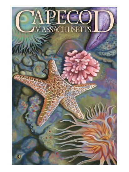 Cape Cod, Massachusetts - Tidepool-Lantern Press-Art Print