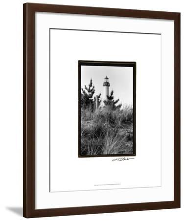 Cape May Afternoon I-Laura Denardo-Framed Premium Giclee Print