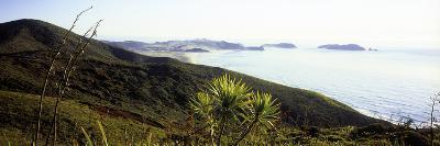 Cape Reinga I-Bob Stefko-Photographic Print