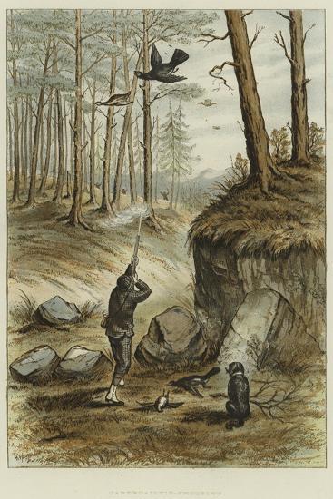 Capercailzie-Shooting--Giclee Print