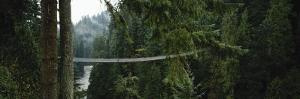Capilano Suspension Bridge, Vancouver, British Columbia, Canada, North America