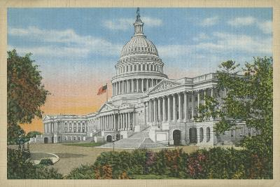 Capitol Building, Washington, D.C.--Art Print