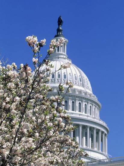 Capitol Building, Washington, DC-Mark Gibson-Photographic Print