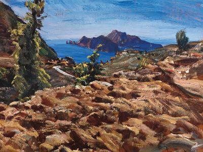 Capri from Massalubrense-Eugenio Viti-Giclee Print