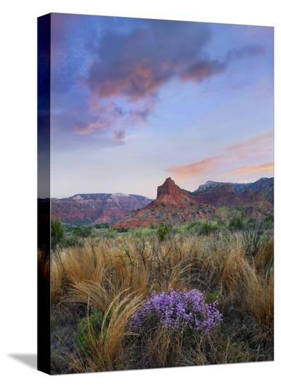 Caprock Canyons State Park, Texas-Tim Fitzharris-Stretched Canvas Print