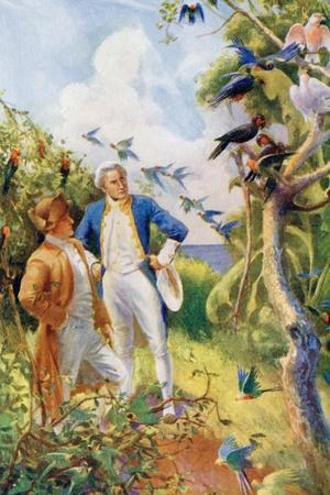 Captain James Cook and Botanist Joseph Banks Examining the Wild Life and Flora in Botany Bay--Giclee Print