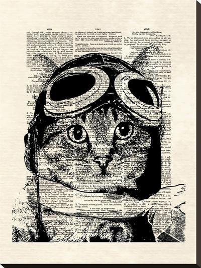 Captain Kitty-Matt Dinniman-Stretched Canvas Print
