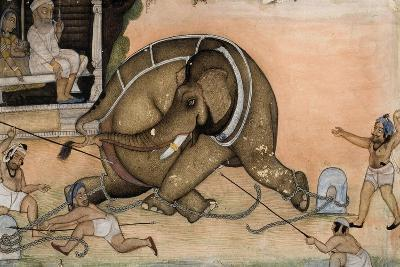 Capture and Taming of Wild Elephant--Giclee Print