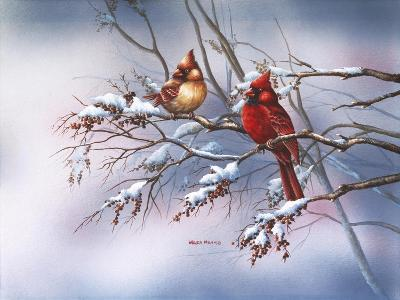 Cardinal in Sumac-Wanda Mumm-Giclee Print