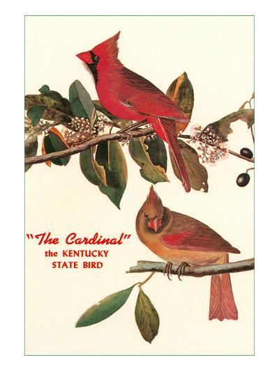 Cardinal, Kentucky's State Bird--Art Print