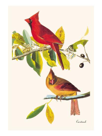 Cardinal-John James Audubon-Art Print
