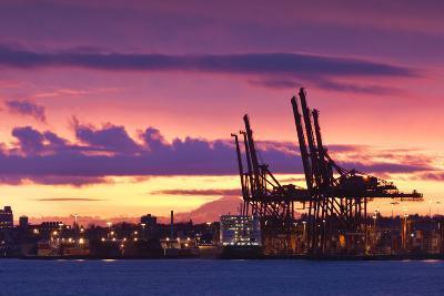 Cargo Cranes, Port of Vancouver, Vancouver, British Columbia, Canada-Walter Bibikow-Photographic Print