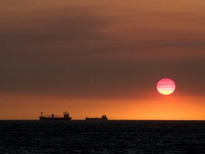 Cargo Ships Silhouetted on Horizon at Sunset, Cottesloe Beach-Orien Harvey-Photographic Print