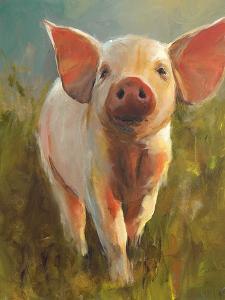 Morning Pig by Cari J^ Humphry