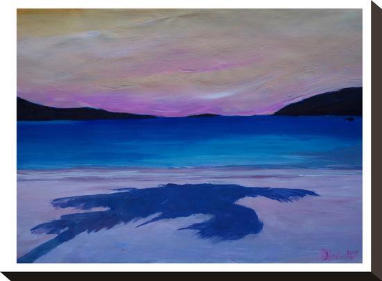 caribbean-beach-palm-in-soft-evening-light