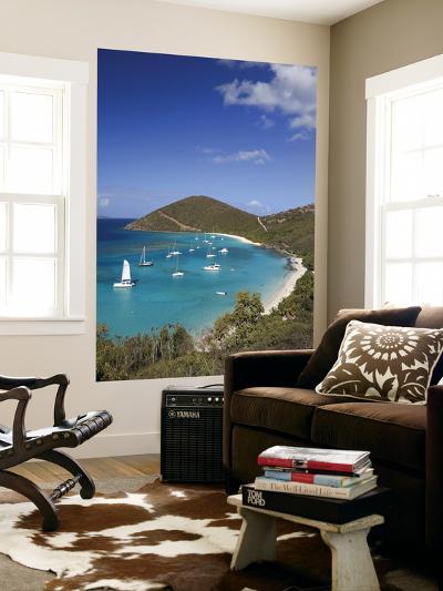 Caribbean, British Virgin Islands, Jost Van Dyke, White Bay-Michele Falzone-Wall Mural