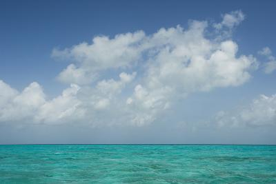 Caribbean Ocean Near Ambergris Caye, Belize-Pete Oxford-Photographic Print