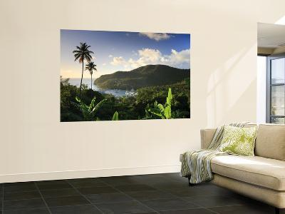Caribbean, St Lucia, Marigot Bay and Harbour-Michele Falzone-Wall Mural