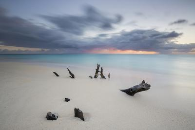 Caribbean Sunset Frames Tree Trunks on Ffryes Beach, Antigua, Antigua and Barbuda-Roberto Moiola-Photographic Print