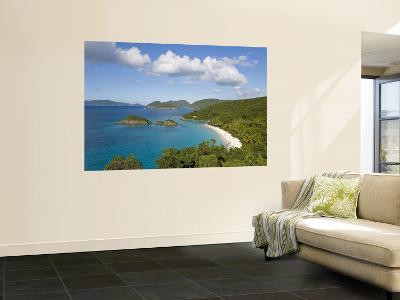 Caribbean, US Virgin Islands, St. John, Beach at Trunk Bay-Gavin Hellier-Wall Mural