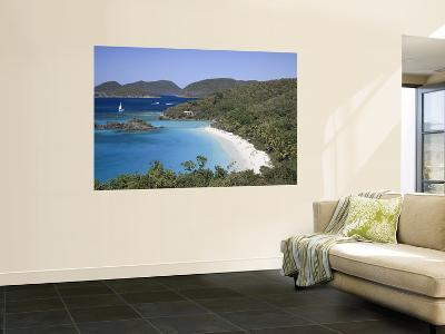Caribbean, Us Virgin Islands, St; John, Virgin Islands National Park, Trunk Bay-Michele Falzone-Giant Art Print