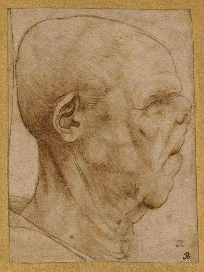 Caricature of the Head of an Old Man, in Profile to the Right, c.1507-Leonardo da Vinci-Giclee Print