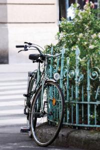 Charming Cycle - Link by Carina Okula