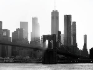 New York 1 by Carina Okula