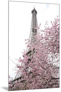 Paris Romance by Carina Okula