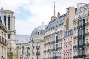 Parisian Edges by Carina Okula