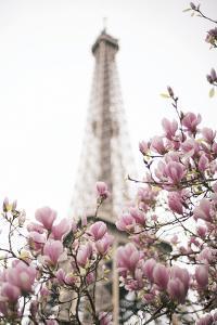 Spring Romance by Carina Okula